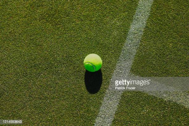 tennis ball and t shape mark with chalk lines still life overhead view - grass court stock pictures, royalty-free photos & images