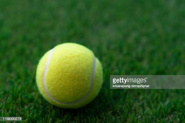tennis ball on a green background,tennis - tennis stock pictures, royalty-free photos & images