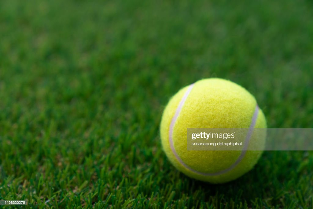 Tennis ball on a green background,Tennis : Stock Photo