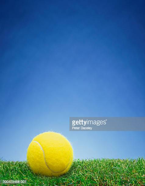 tennis ball on grass, close up - tennis ball stock pictures, royalty-free photos & images