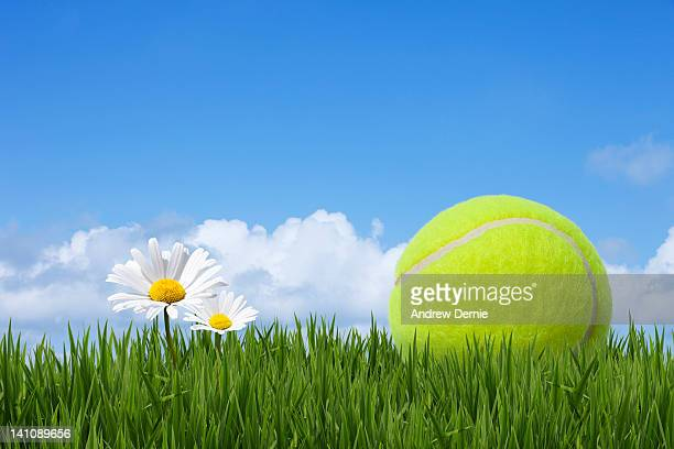 tennis ball - andrew dernie stock pictures, royalty-free photos & images