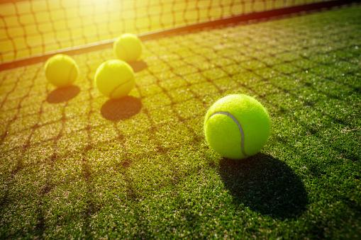 Tennis balls on grass court with sunlight 849069562