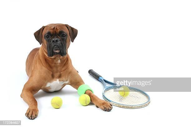 Tennis palyer