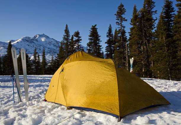 Tent and skis, winter camp, White Pass behind, Chilkoot Pass, Chilkoot Trail, British Columbia, B.C., Canada