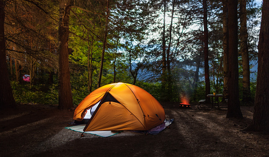 Tent At Forest - gettyimageskorea