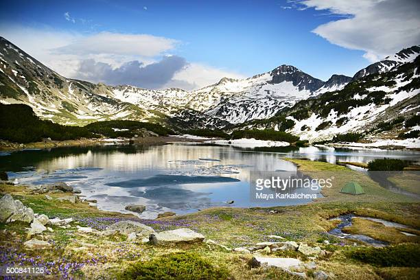 tent by lake at pirin mountain national park - pirin mountains stock pictures, royalty-free photos & images