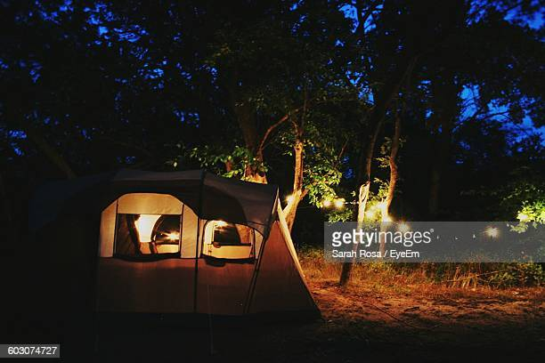 Tent In Forest At Night