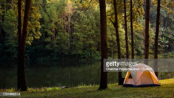 tent in forest by lake - キャンプする ストックフォトと画像