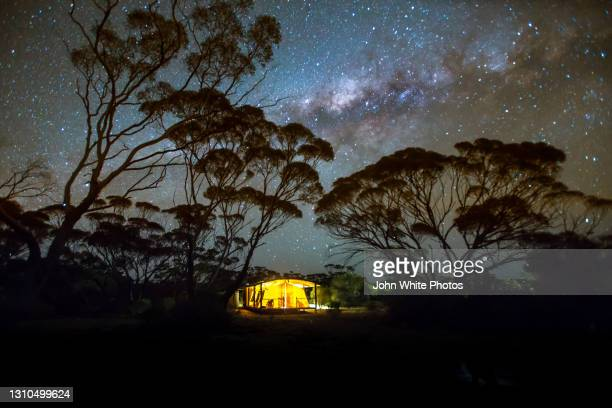 tent in the gawler ranges. eyre peninsula. south australia. - night safari stock pictures, royalty-free photos & images