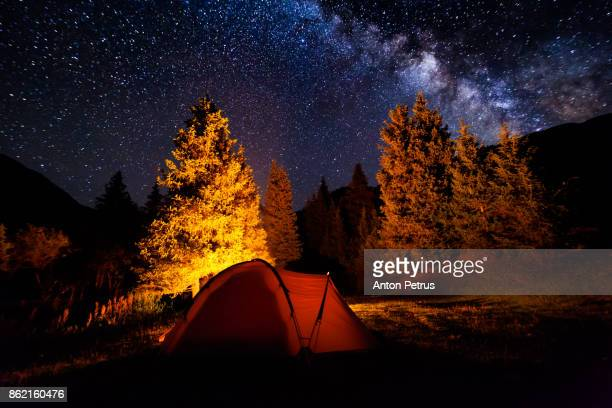 Tent near the fire in the forest under the starry sky