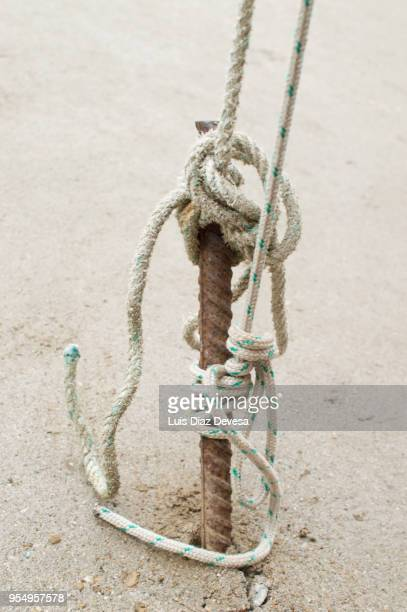 tent peg on  camp - displaced persons camp stock pictures, royalty-free photos & images