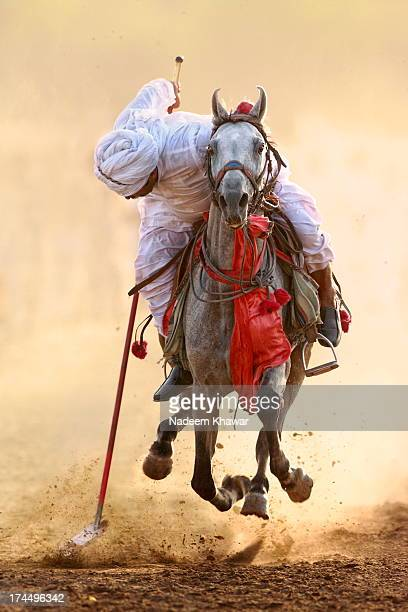 tent pegging.(#3) - punjab pakistan stock photos and pictures