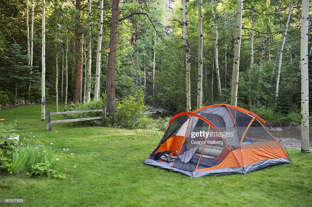 Tent setup on grass lawn next to creek and forest : Stock Photo