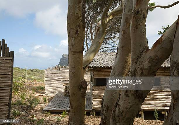 Tented Camp, Smitswinkel Bay, Makeka Design Lab, Table Mountain National Park, South Africa Detailed View Of Gum Tree With Rustic Hut, Makeka Design...