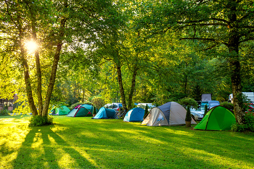 Tents Camping area, early morning, beautiful natural place 584589782