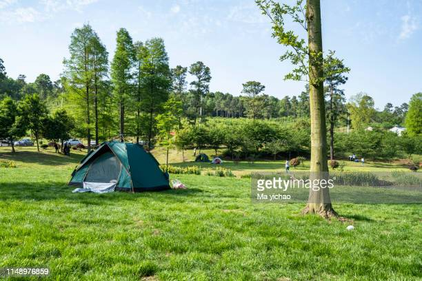 tents camping area - キャンプ ストックフォトと画像