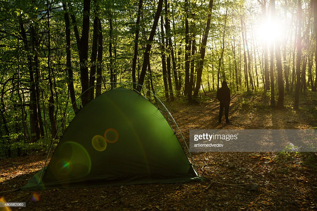 Tents in a beautifull forest with man on background : Stock Photo