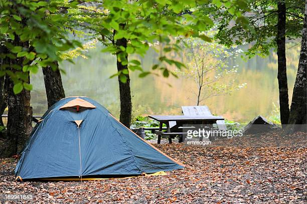 tents set up for camping in the woods - nylon stock photos and pictures