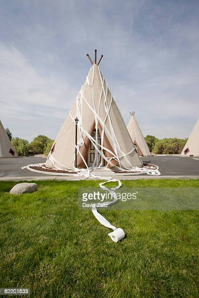 tepee-sh - wrapped in toilet paper stock pictures, royalty-free photos & images