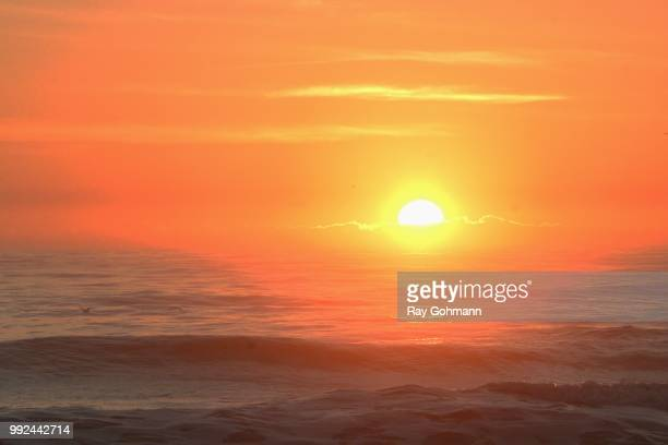 tequila sunrise ストックフォトと画像 getty images