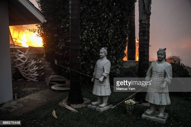 Teracota Warrior replicas garden decorations sit on the side of the fence that isn't burning on December 5 2017 in Ventura California