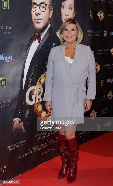 Terelu Campos attends the 'Grandes Exitos' theatre play premiere at Rialto Theatre on January 15 2018 in Madrid Spain