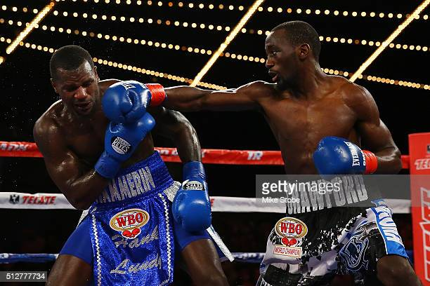 Terence Crawford punches Henry Lundy during their WBO World Championship bout at Madison Square Garden on February 27 2016 in New York City