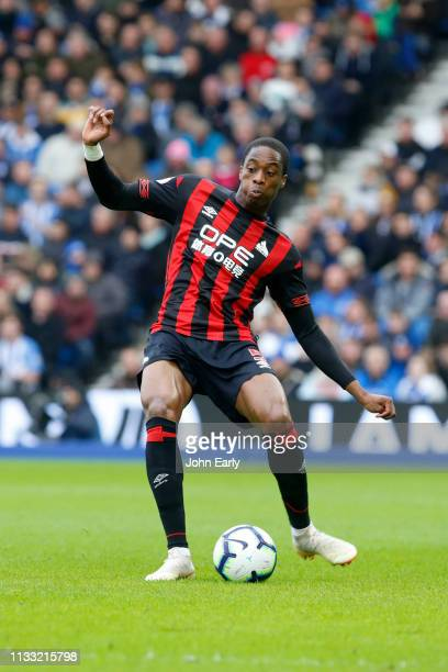 Terence Kongolo of Huddersfield Town during the Premier League match between Brighton Hove Albion and Huddersfield Town at American Express Community...