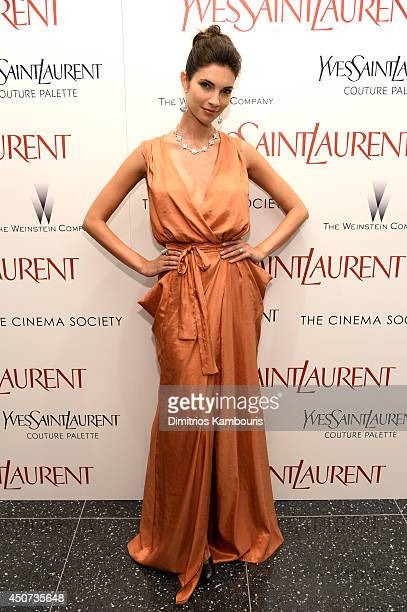 Teresa Moore attends The Weinstein Company's Yves Saint Laurent premiere hosted by Yves Saint Laurent Couture Palette The Cinema Society at Museum of...