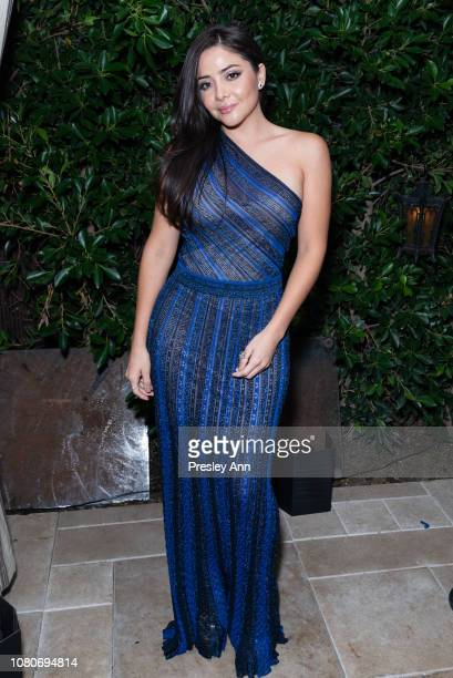 Teresa Ruiz attends Los Angeles Premiere Of Alfonso Cuaron's Roma After Party at Chateau Marmont on December 10 2018 in Hollywood California