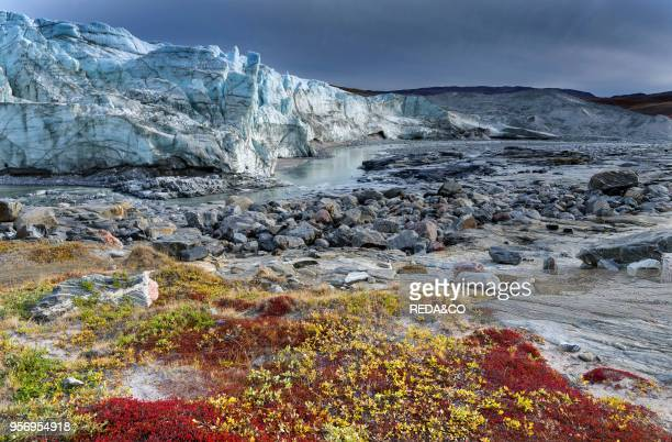 Terminus of the Russell Glacier Landscape close to the Greenland Ice Sheet near Kangerlussuaq America North America Greenland Denmark