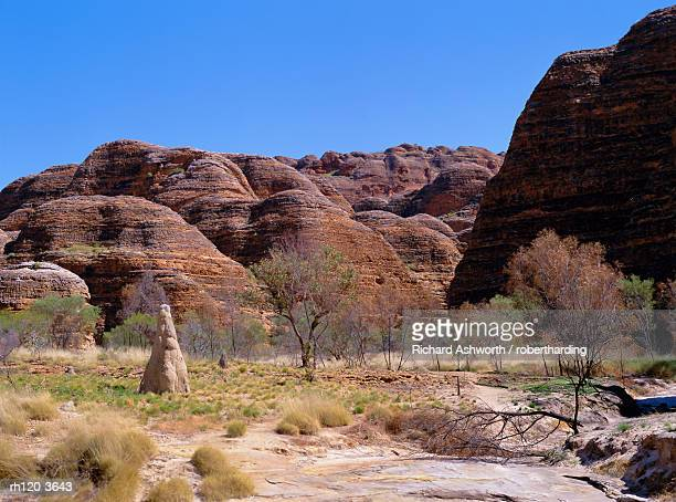 Termite mound, grasses and trees with typical rounded rocks in the background, Bungle Bungle, Purnululu National Park, UNESCO World Heritage Site, Kimberley, West Australia, Australia, Pacific