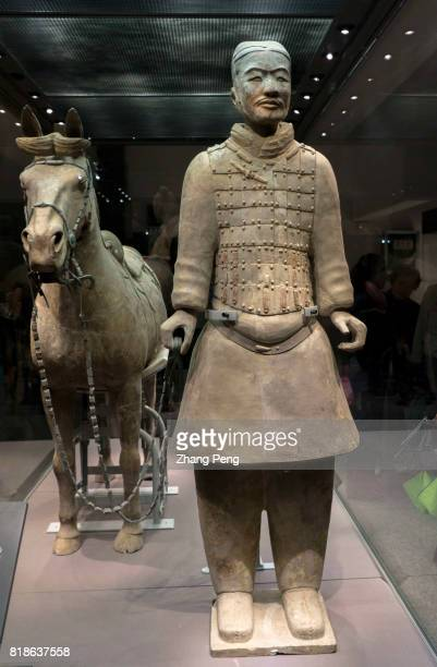 Terra cotta warrior leading a horse exhibited in Shaanxi history museum They are exactly the replicas of the imperial guard of Qin shi Huang The...