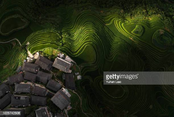 Terrace and Village, Longji Terraced Fields in Longsheng,Guilin,China