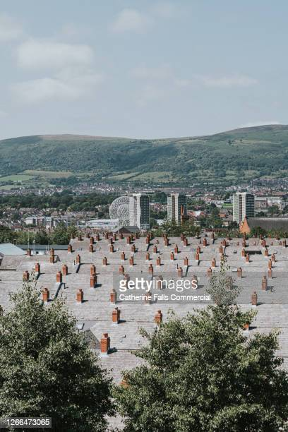 terrace housing rooftops - belfast stock pictures, royalty-free photos & images
