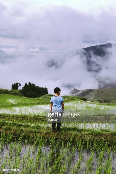 terrasse in yunnan china - provinz yunnan stock-fotos und bilder