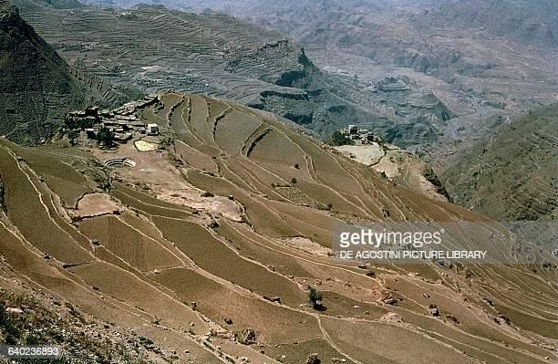 Terraced fields Ethiopia