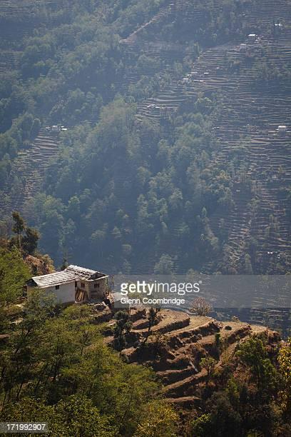 terraced hillsides - bandar seri begawan stock pictures, royalty-free photos & images