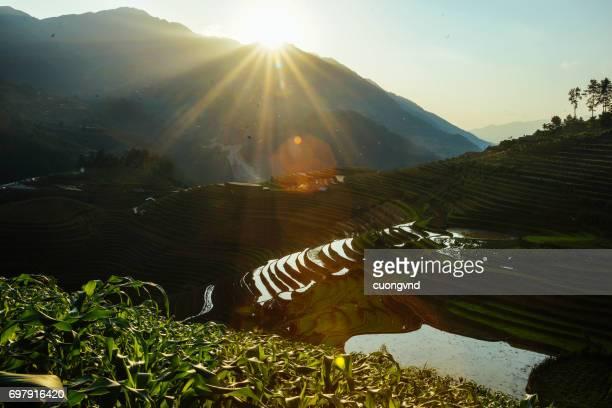 Terraced Rice Fields Scenery in Spring Water Season