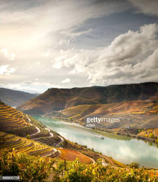 terraced vineyards and river in douro valley, portugal - portugal imagens e fotografias de stock