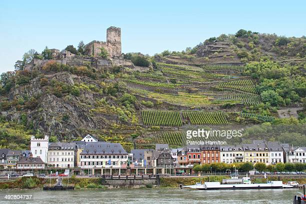 CONTENT] Terraced vineyards using every bit of land above the town of Kaub on the River Rhine Burg Gutenfels Castle on the top