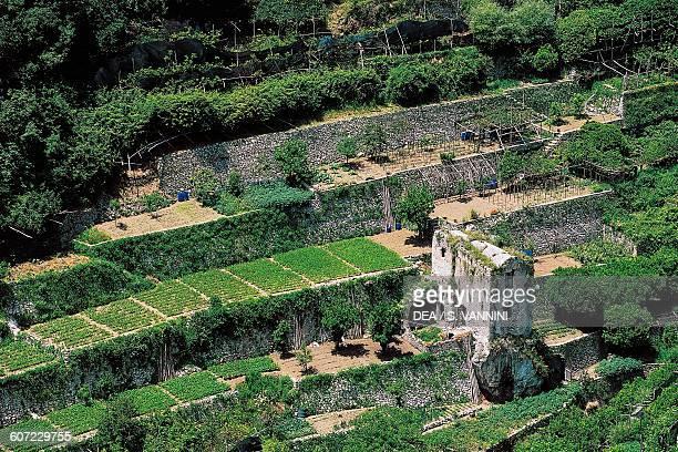 Terraces in Ravello Campania Italy