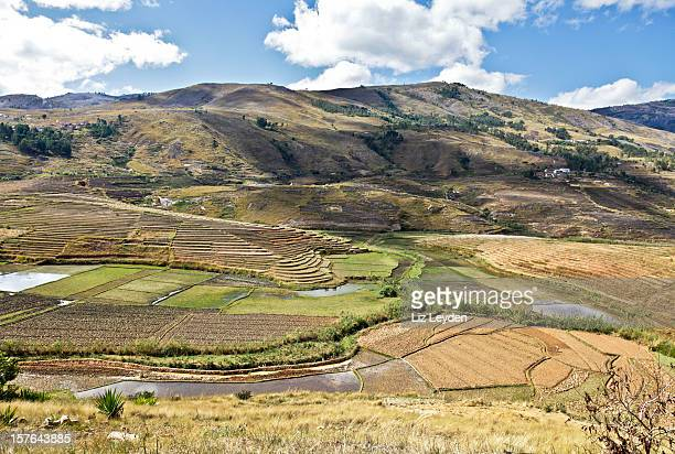terracing and paddy fields in central madagascar - rice terrace stockfoto's en -beelden