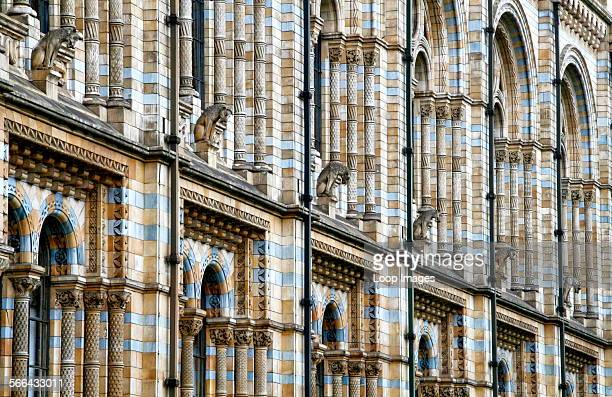 Terracotta tiles on the outside of the Waterhouse building of the Natural History Museum