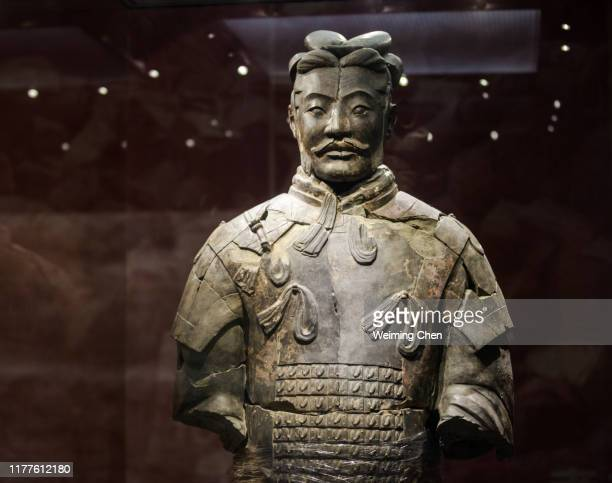 terracotta warriors and horses of qin dynasty - treasuregold stock pictures, royalty-free photos & images