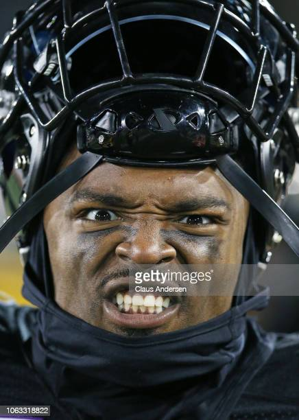 Terrell Sinkfield Jr #14 of the Hamilton TigerCats enjoys the action against the Montreal Alouettes in a CFL game at Tim Hortons Field on November 3...