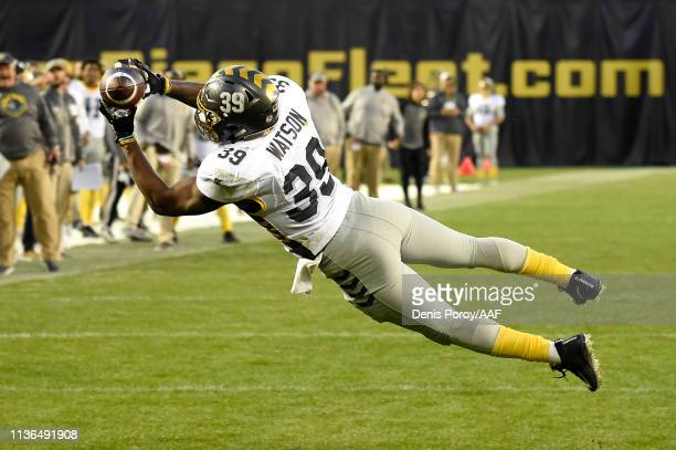 Terrell Watson of the San Diego Fleet catches a touchdown pass during the third quarter against the Birmingham Iron in an Alliance of American...