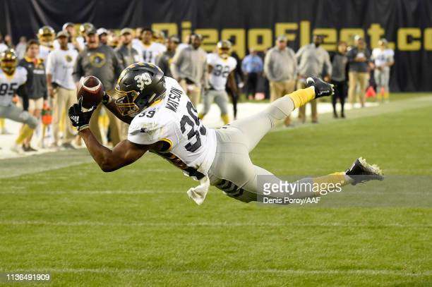 TerrellWatson of the San Diego Fleet catches a touchdown pass during the third quarter against the Birmingham Iron in an Alliance of American...