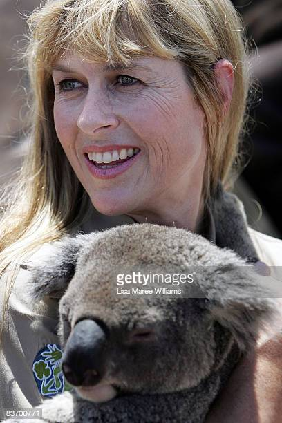 Terri Irwin holds a koala during the official launch of the Australian Wildlife Hospital at Australia Zoo on November 15 2008 on the Sunshine Coast...