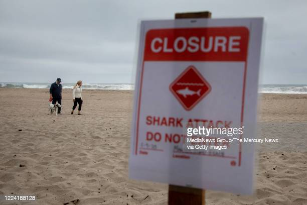 Terri Tucker walks with her husband Brent and their dog Lily along Sand Dollar Beach in Watsonville Calif where she had earlier witnessed a shark...